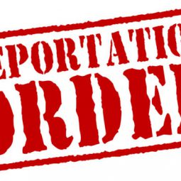 Image for Miami Criminal Lawyers Must Advise Clients of Immigration Consequences post