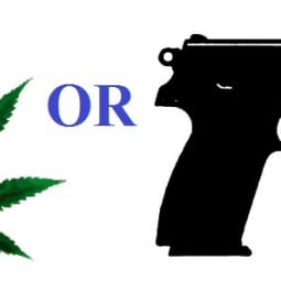 Image for Want Medical Marijuana in Miami, FL? You Have to Give Up Your Gun post