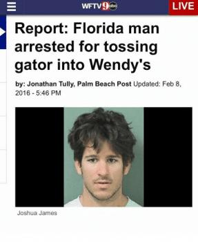 Bizarre Florida Crimes Become A Viral Internet Meme Miami Lawyer