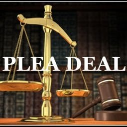 Image for How Plea Agreements Work in Miami Florida post